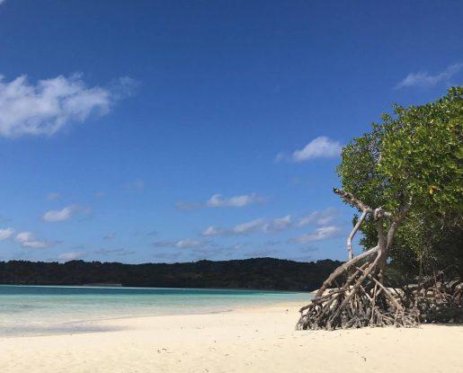 Rote-island02-515x415