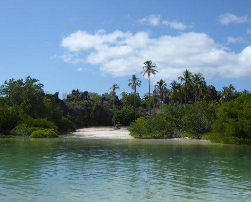 Rote-island03-515x415