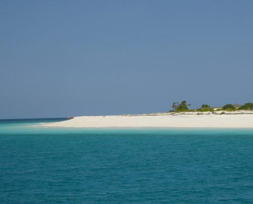 Rote-island04-515x415